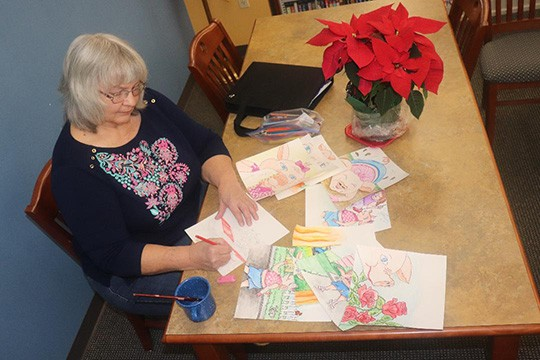 "DRAWING FROM FAMILY EXPERIENCES, Warsaw resident Janet Adams has released her latest children's work titled ""Sally The Cow."" The book is available at the Warsaw library where Adams recently worked on sketches."