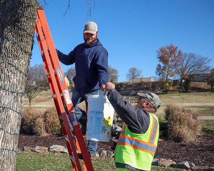 READYING CHRISTMAS CHEER, City of Warsaw employees Justin Williams and Dan Nelson strung lights at Drake Harbor.