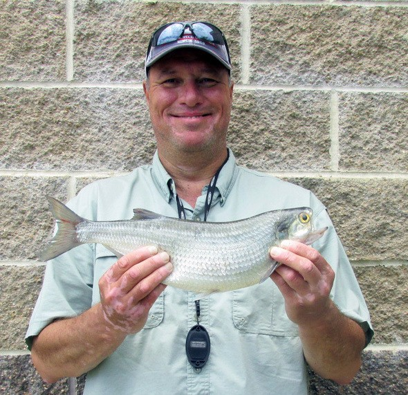 CONGRATULATIONS TO KERRY GLENN on breaking the pole-and-line state record by catching a 2-pound, 2-ounce goldeye on Truman Lake.