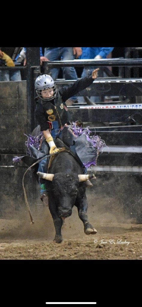 """A YOUNG BUCKAROO, Tucker Root has quickly gained recognition in the area for his skilled mini bull and steer riding. A sixth grader at John Boise Middle School, Root told the  Enterprise, """"I enjoy the adrenaline rush that comes with riding."""""""