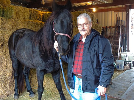 HORSE HAIR HAS BECOME A HOT COMMODITY and goes for big bucks on the black market; used for tail extensions and jewelry. Warsaw resident Bill Pickens keeps a close eye on his horses and says it takes years for a tail to grow back. Without it, they can't fight off biting flies or other pests.